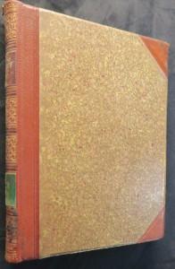náhled knihy - Skály : několik výjevů z dějin samoty (Sebrané spisy Aloise Jiráska díl XIV)
