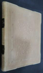 náhled knihy - Skály : několik výjevů z dějin samoty