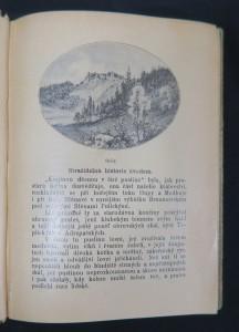 antikvární kniha Skály : několik výjevů z dějin samoty, 1900