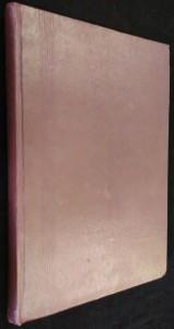 náhled knihy - Zářivý cíl : Román