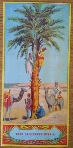 náhled knihy - Fezovka s motivem palmy
