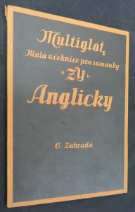 náhled knihy - Anglicky : malá učebnice \