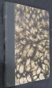 náhled knihy - Romány tří magů. I, Román Manfreda Macmillena