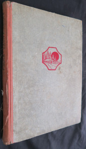 náhled knihy - Zářivá křídla : devatero povídek
