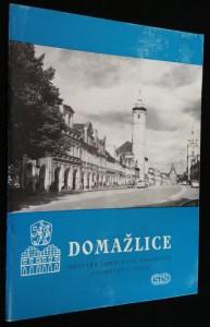 náhled knihy - Domažlice : městská památková rezervace a památky v okolí