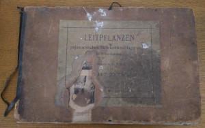 náhled knihy - Leitpflanzen der palaeozoischen Steinkohlenablagerungen in Mittel-Europa