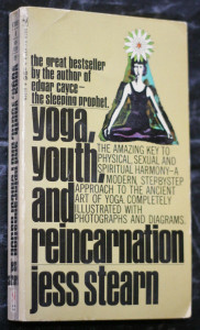 náhled knihy - Yoga, youth and reincarnation