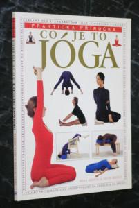 náhled knihy - Co je to jóga : systematický průvodce po Iyengarově metodě jógy pro relaxaci, zdraví a duševní a tělesnou pohodu