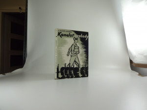 náhled knihy - Kamelot svobody