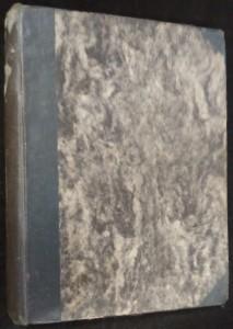náhled knihy - Vzbouření na Elsinoře
