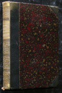 náhled knihy - Boj křesťanství s pohanstvím : obrazy z minulosti ku porovnání s přítomností. Kniha první