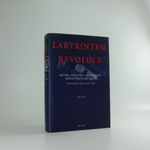 náhled knihy - Labyrintem revoluce : aktéři, zápletky a křižovatky jedné politické krize : (od listopadu 1989 do června 1990)