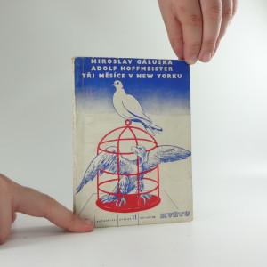 náhled knihy - Tři měsíce v New Yorku