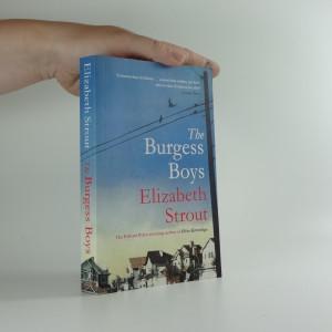 náhled knihy - The Burgess Boys