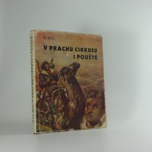 náhled knihy - V prachu cirkusu i pouště : příběh statečného chlapce