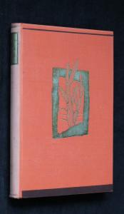 náhled knihy - Žhavá země