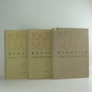 náhled knihy - Rukopisy
