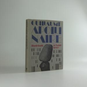 náhled knihy - Hudebník ze Saint-Merry