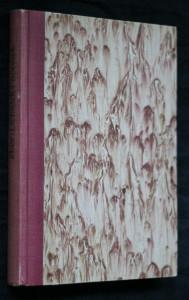náhled knihy - Lichnický notýsek