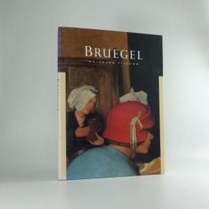 náhled knihy - Pieter Bruegel the Elder