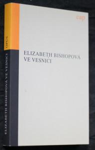 náhled knihy - Ve vesnici : a jiné prózy