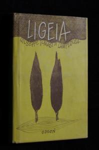 náhled knihy - Ligeia a jiné prózy