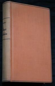 náhled knihy - Stará milenka : román