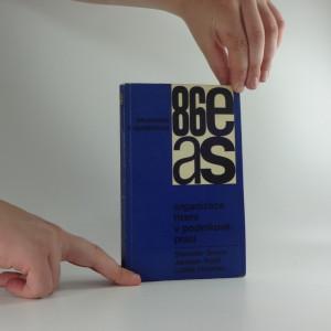 náhled knihy - Organizace řízení v podnikové praxi