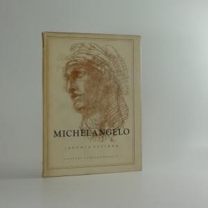 náhled knihy - Michelangelo Buonarroti : Život a dílo