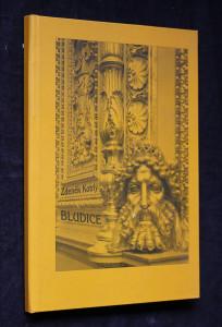 náhled knihy - Bludice : (román v SMS)