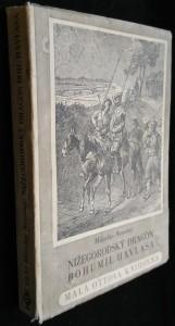 náhled knihy - Nižegorodský dragón Bohumil Havlasa