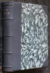 náhled knihy - Orlík, syn Napoleonův : román života