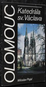 náhled knihy - Olomouc : Katedrála sv. Václava