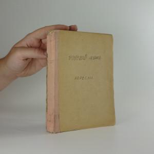 náhled knihy - Ruština pro Čechy