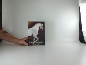 náhled knihy - Kronika kladrubská kniha druhá