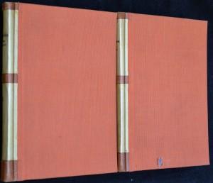 náhled knihy - Nelze uniknout, 2 svazky