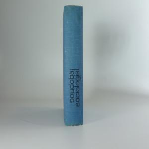 náhled knihy - Soudobá sociologie I.