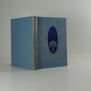 náhled knihy - Maloměstský román