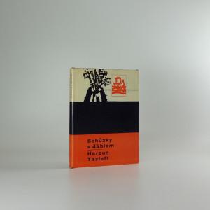 náhled knihy - Schůzky s ďáblem