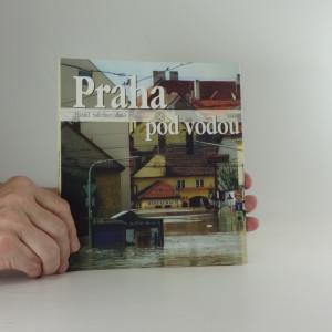 náhled knihy - Praha pod vodou