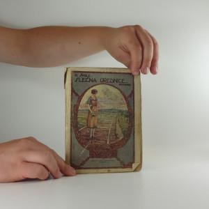 náhled knihy - Slečna úřednice