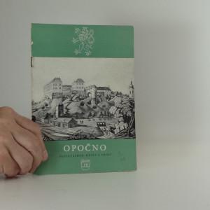 náhled knihy - Opočno: státní zámek, město a okolí