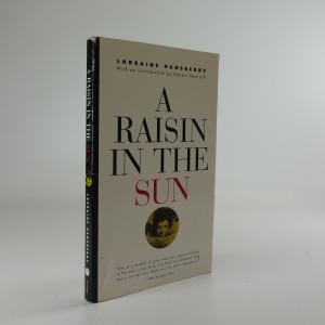 náhled knihy - A Raisin in the Sun