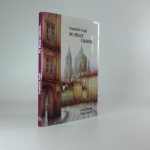 náhled knihy - Po Praze chodím..