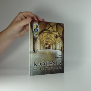 náhled knihy - Kameník krále Vladislava