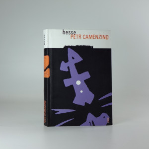 náhled knihy - Petr Camenzind