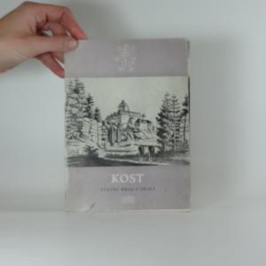 náhled knihy - Kost : státní hrad a okolí