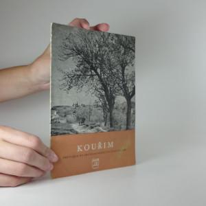 náhled knihy - Kouřim, průvodce po archeologických památkách