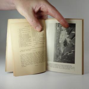 antikvární kniha Německý Brod, 1921