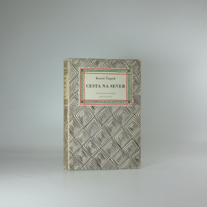 náhled knihy - Cesta na sever : pro větší názornost provázená obrázky autorovými a básněmi jeho ženy